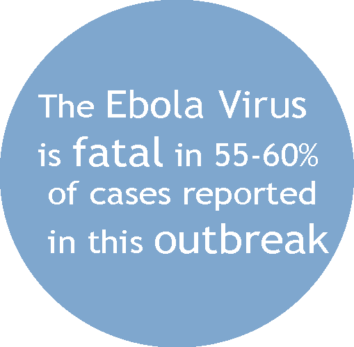 ebola and the role of international However, during the ebola crisis, the role of health in ministerial messaging has been limited to hospital visits, bedside prayers and fellowship with bereaved families christian churches have hospitals and health posts across the world the united methodist church has nearly 300 across africa alone but how do we engage the pulpit more.