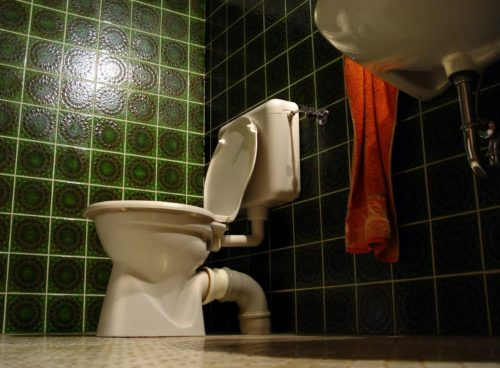 Health and Hygiene - The Disgusting Truth About Toilets Image